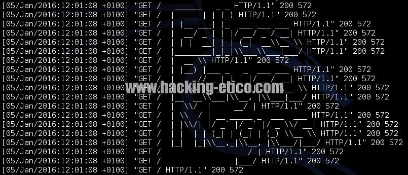 ASCII Art en logs de servidor Web